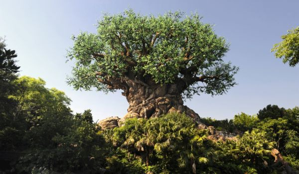 Jeff Goldblum in Independence Day; Resurgence